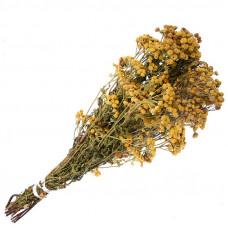Веник банный цветочно-травный. Пижма. ВиноВита.